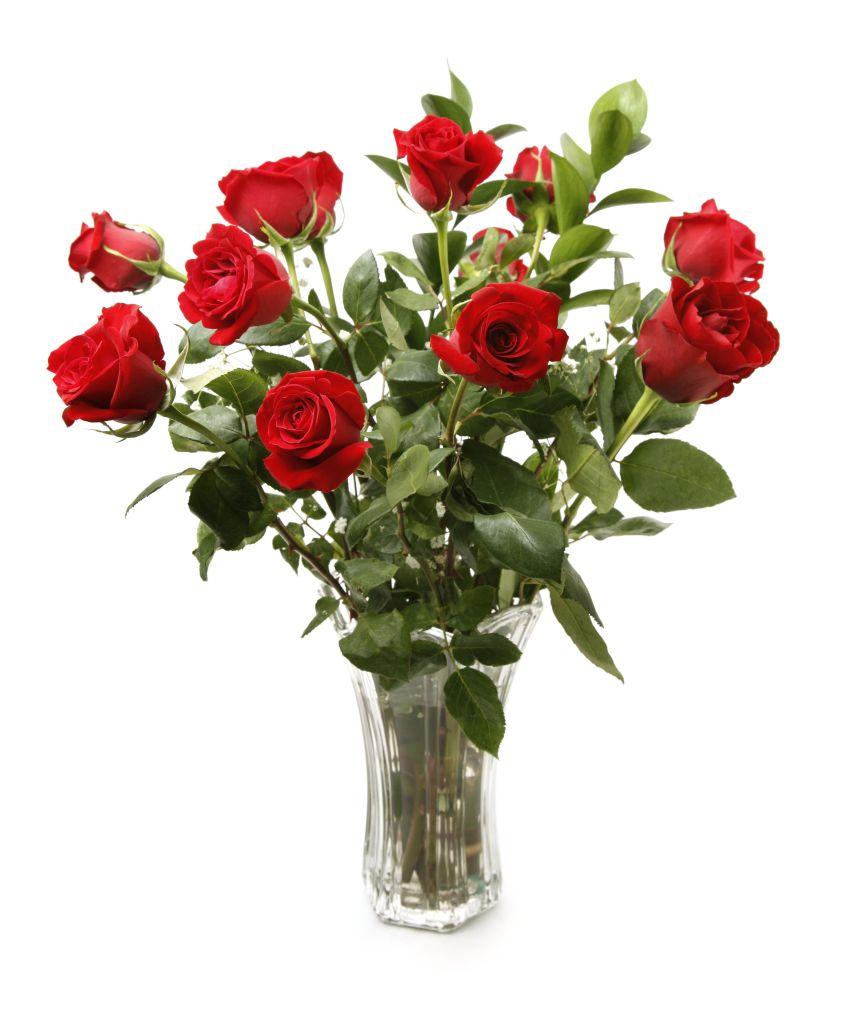 One Dozen Red Roses